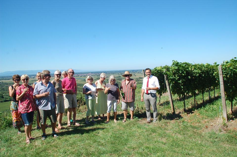 Sommerprogramm führte in die Reben – Dr. Johannes Fechner